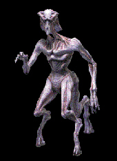 An example of species 8472